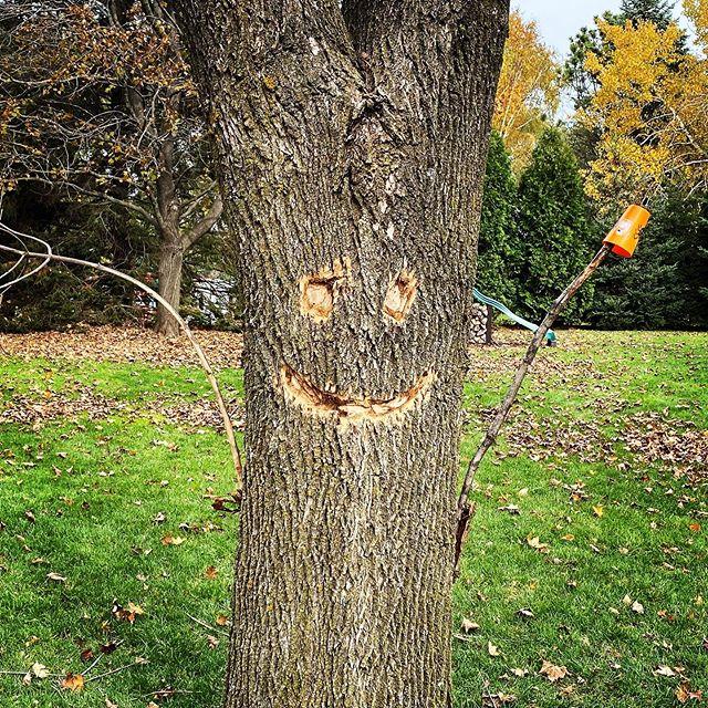 Chainsaw art on dead tree. #stihl