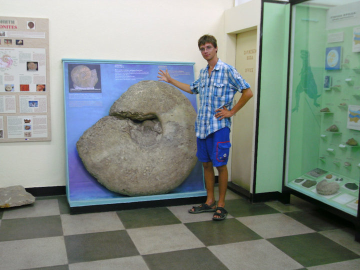 Can't beat a giant ammonite.