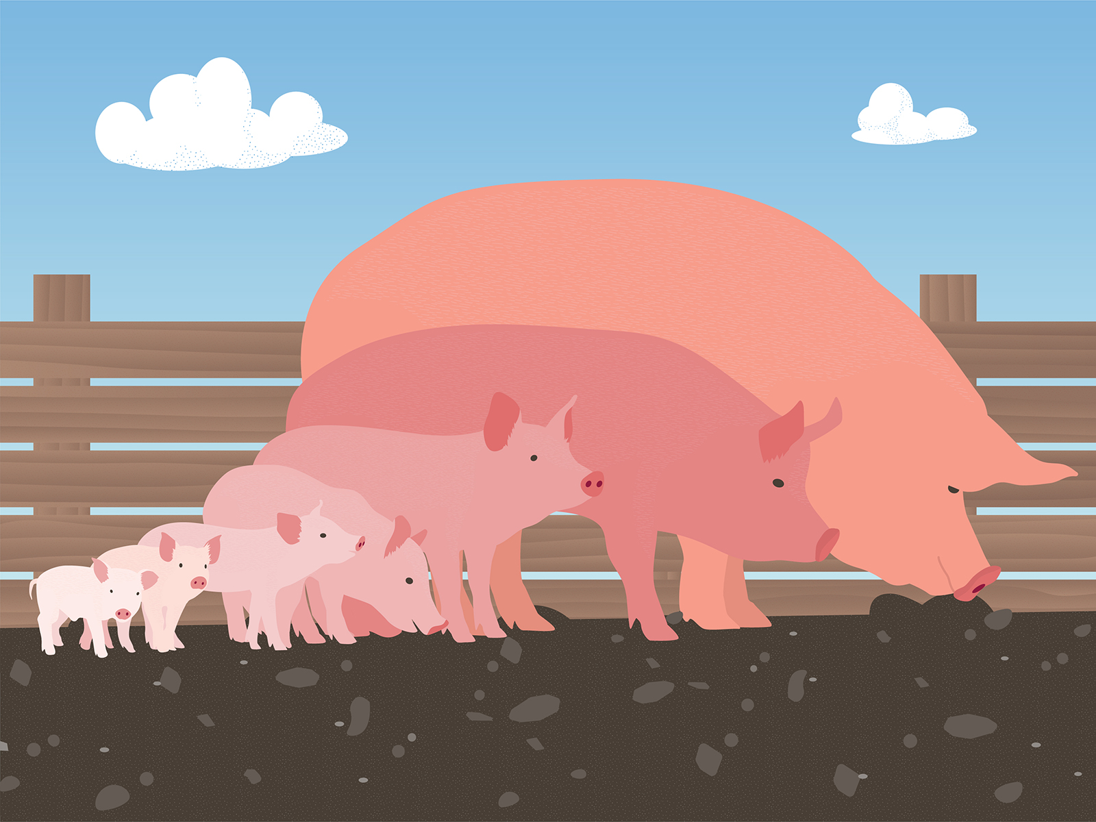pigs-IG-Dribbble_F.jpg