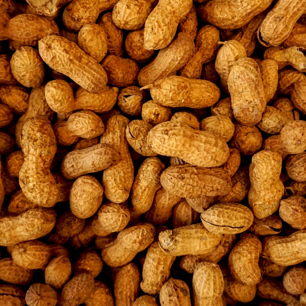 Practically Pure Peanut Butter - The peanut butter we use is simply dry roasted peanuts with a sprinkling of sea salt.