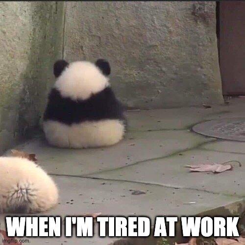 Tired at work meme