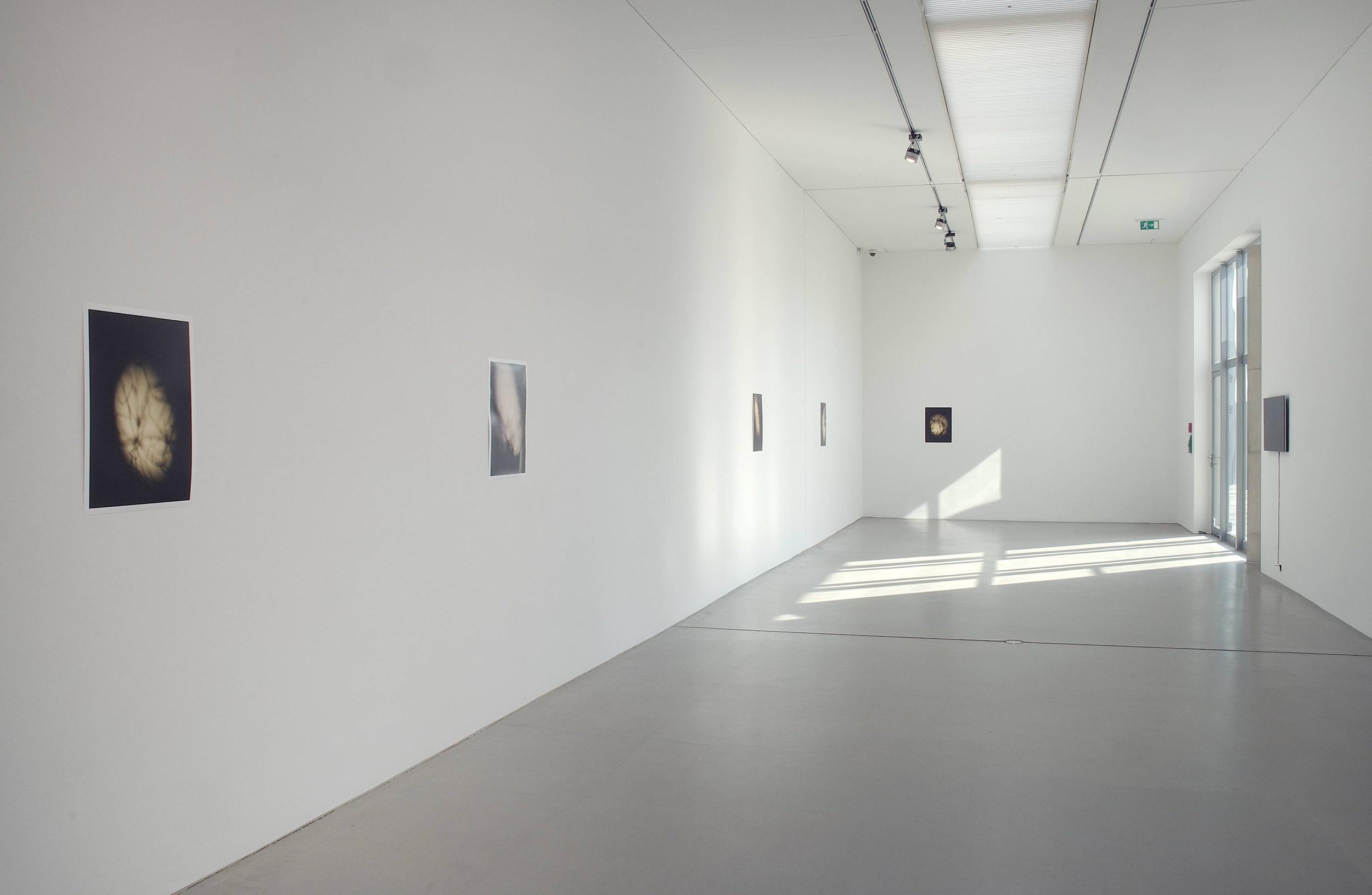 """J. Parker Valentine, """"Topo,"""" installation view, Langen Foundation, Dusseldorf, 2014"""