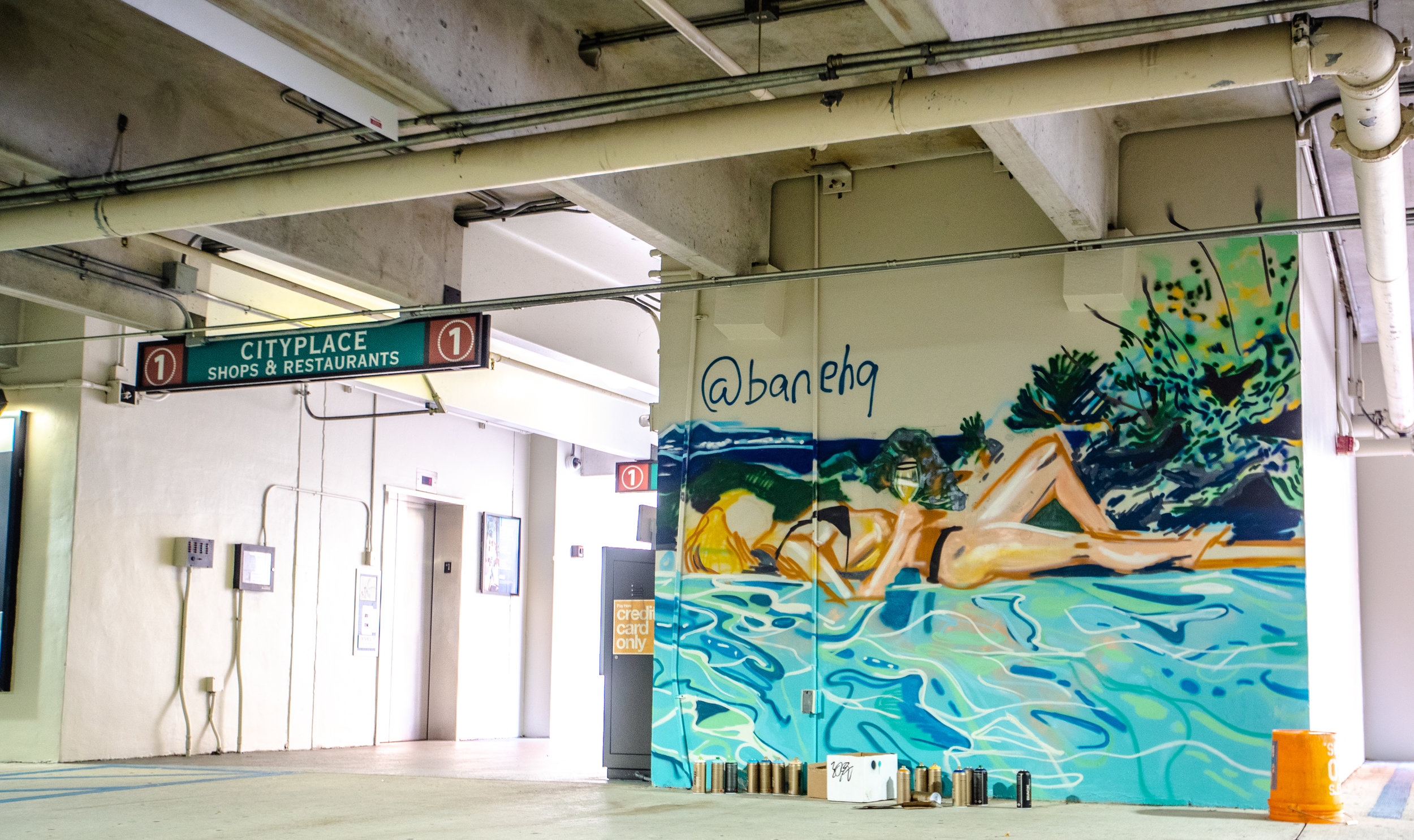 palm betch in her natural environment - BANEA calm relaxing mural meant to capture that one moment of zen we all can enjoy in paradise. Captured by Natasha Rawding while on vacation. But a feeling we all can relate.Location: Sapodilla Garage, ground level