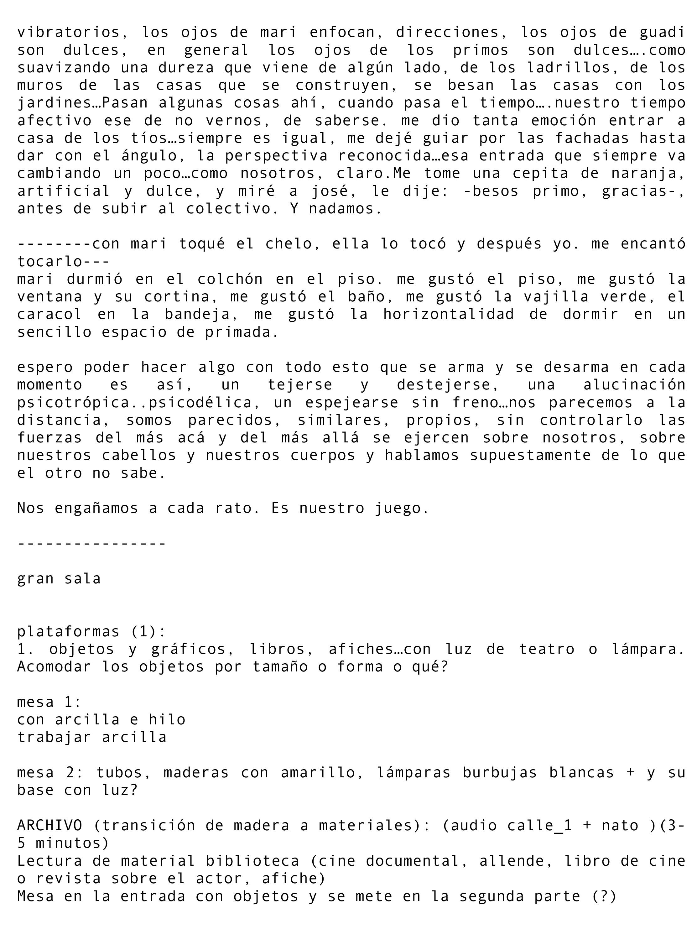 DIARIO_ARGENTINA-17.jpg