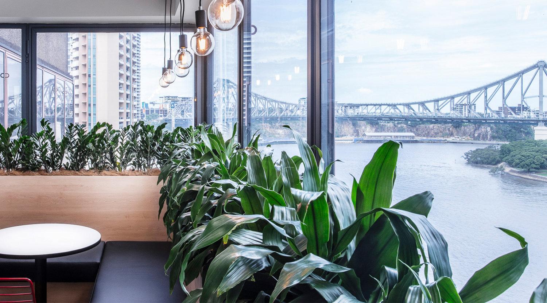 office-design-brisbane.jpeg