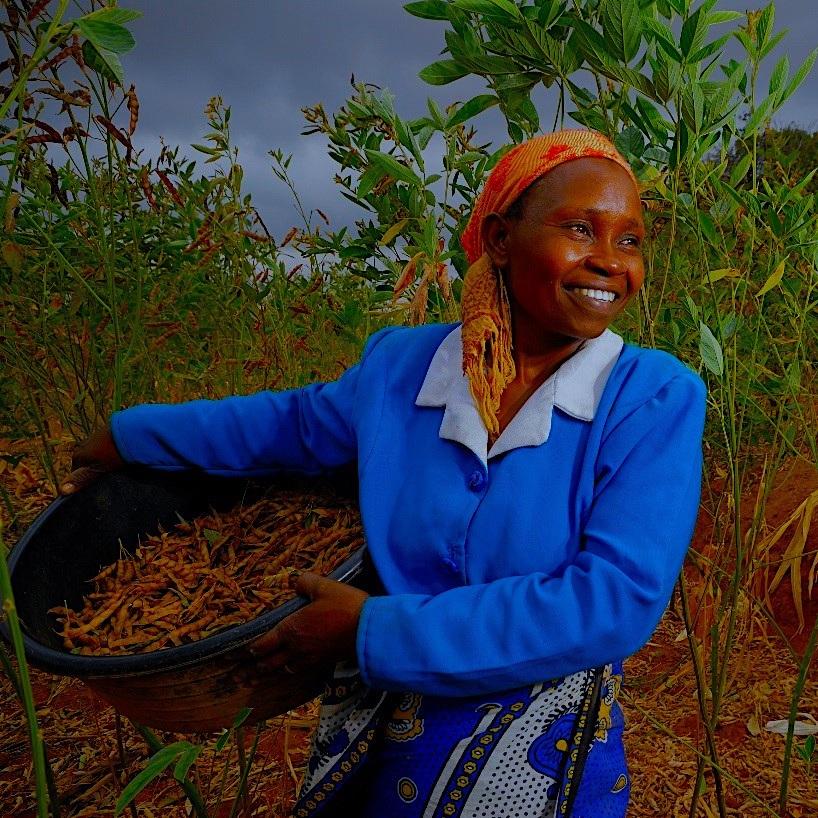 woman-farmer-kenya.jpg