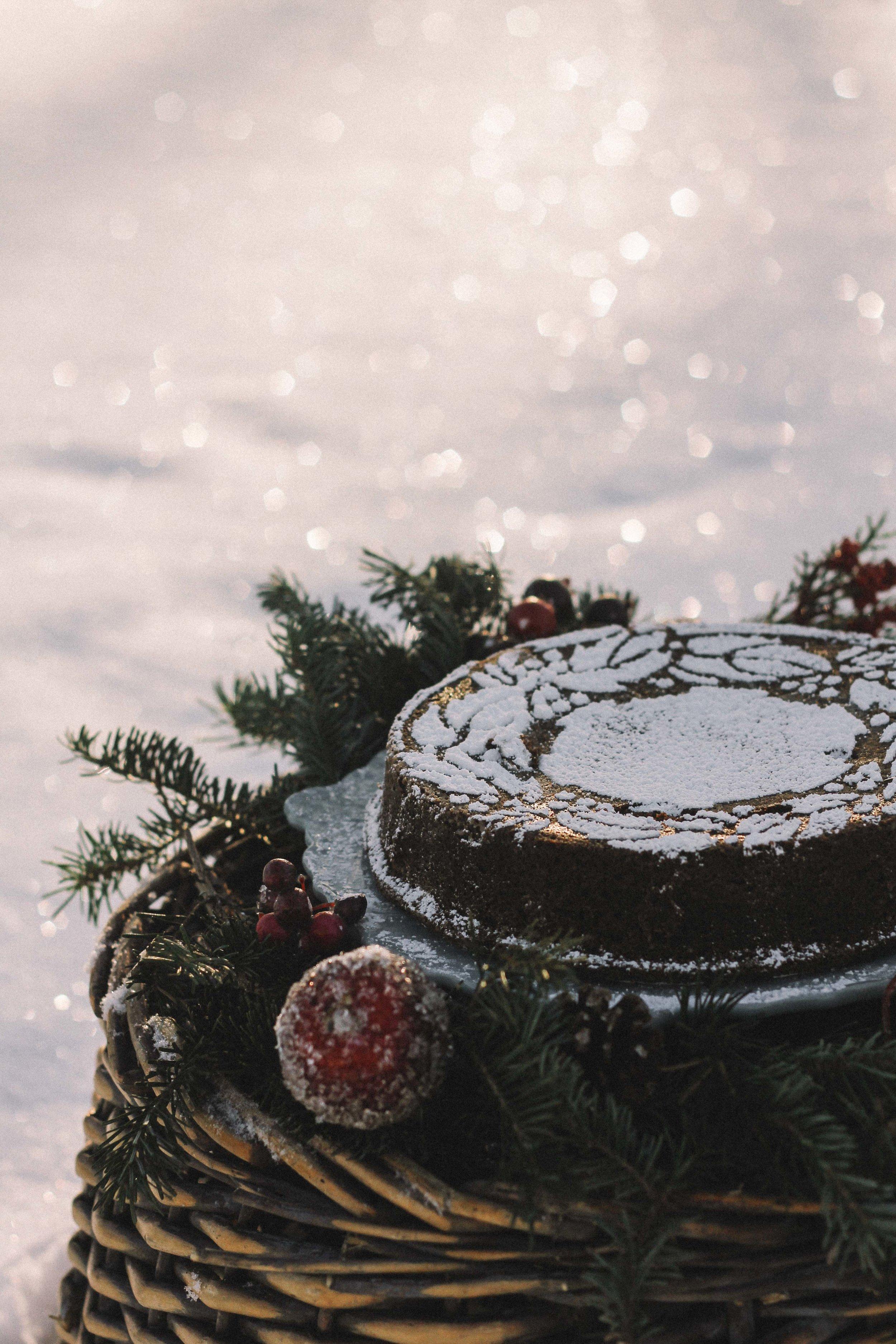 Winter Picnic-4.jpg