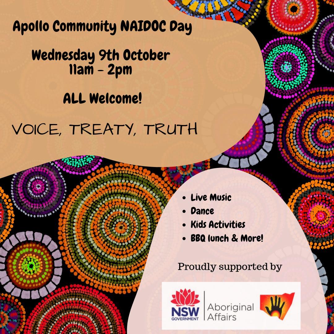 Apollo Community NAIDO Day 2019.png