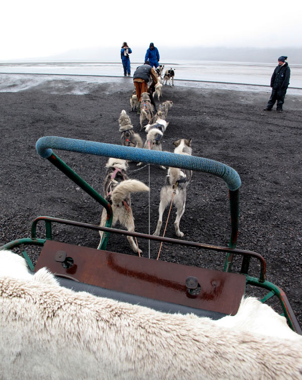 Ride in a dog sled