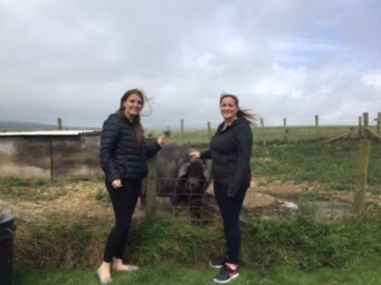 Our visit to the Children's Centre Community Farm   16th August 2018