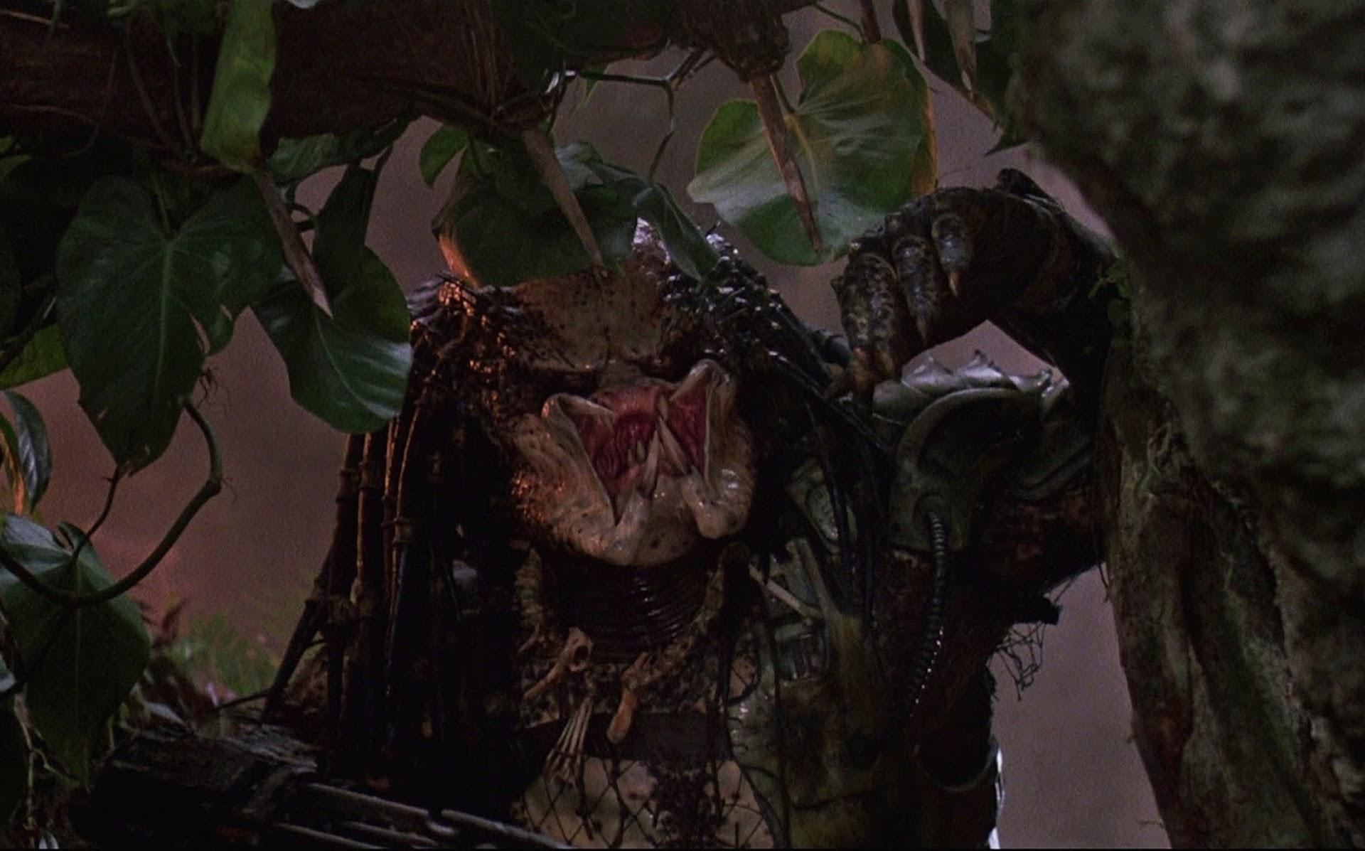 Predator1987_Screengrab.jpg