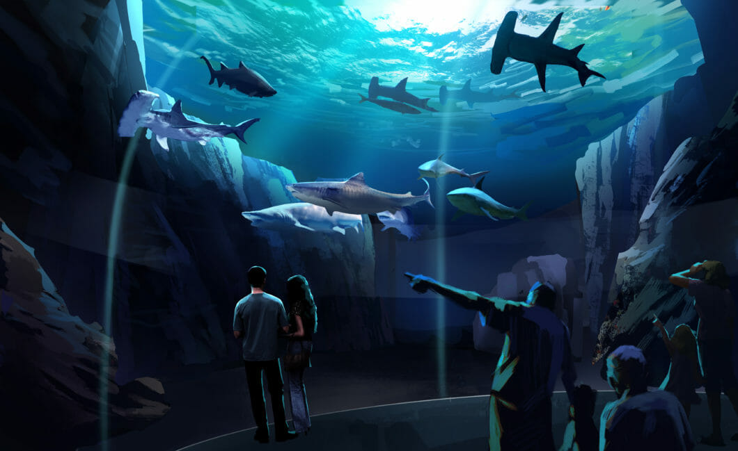 georgia-aquarium-breaks-ground-on-expansion-2020-1060x649.jpg