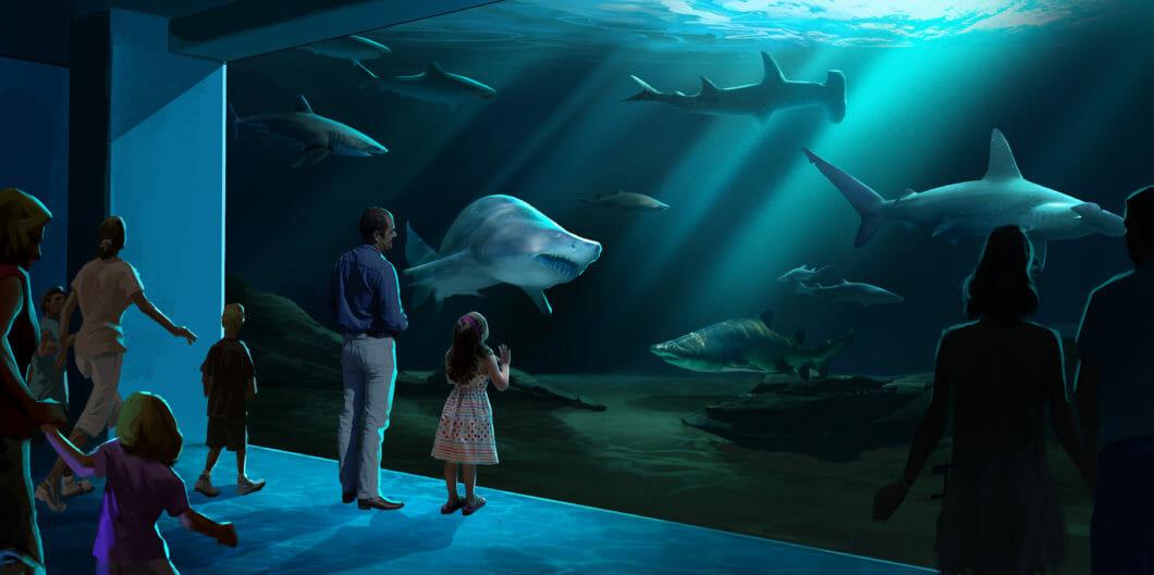georgia-aquarium-breaks-ground-on-expansion-2020-5-1060x529.jpg