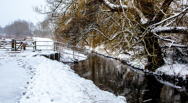 snowbig-5.jpg