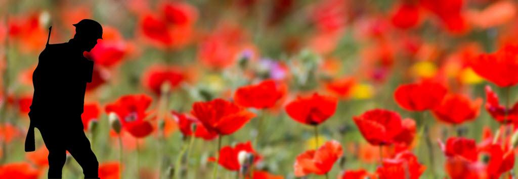 silent_soldier.jpg