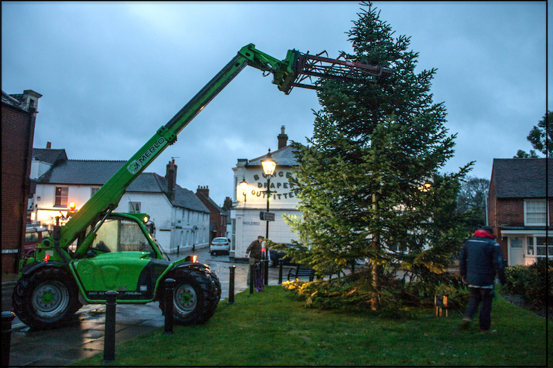 Dawn - and the tree is dropped into position