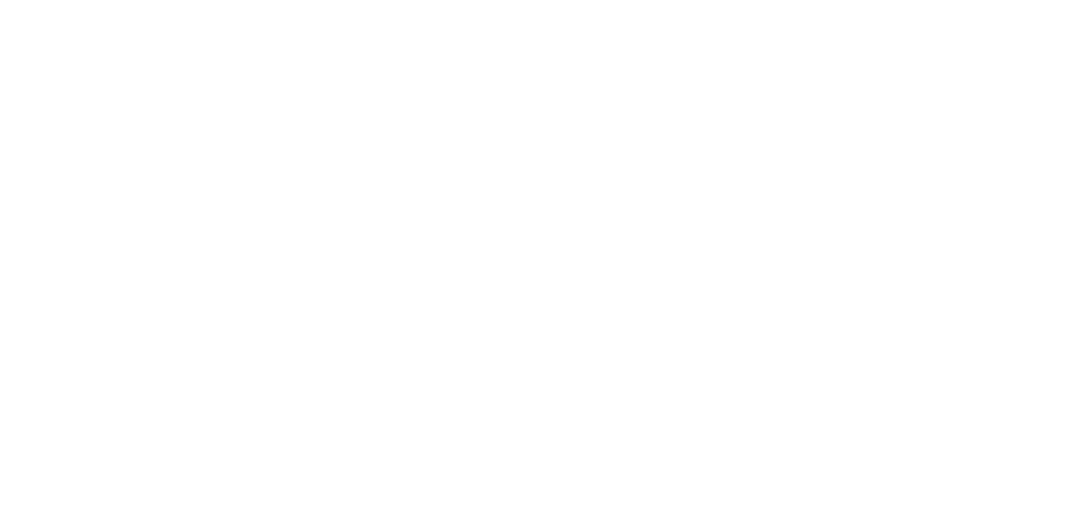 Rains logo.png
