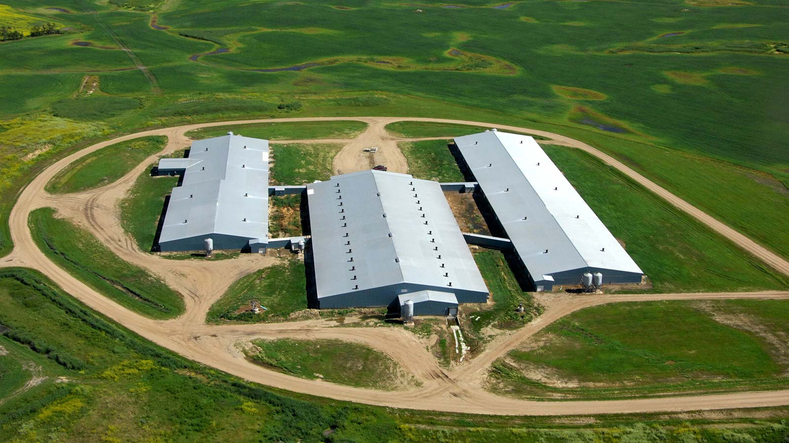 Olymel-Farm-Arial-Photos-2011-042.jpg