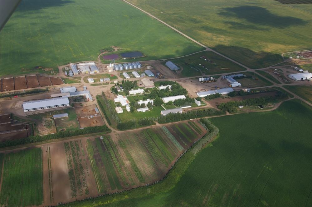 Pig-Farm.jpg