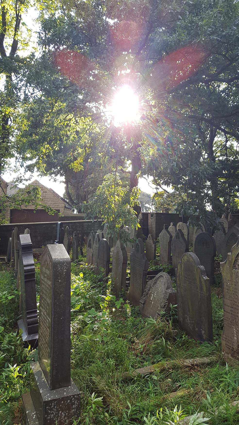 Searching for Sylvia Plath, St Thomas Church graveyard, Heptonstall