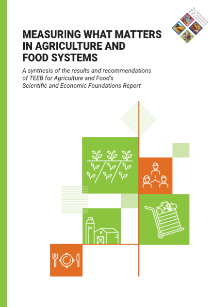Measuring what matters in agriculture and food systems.png