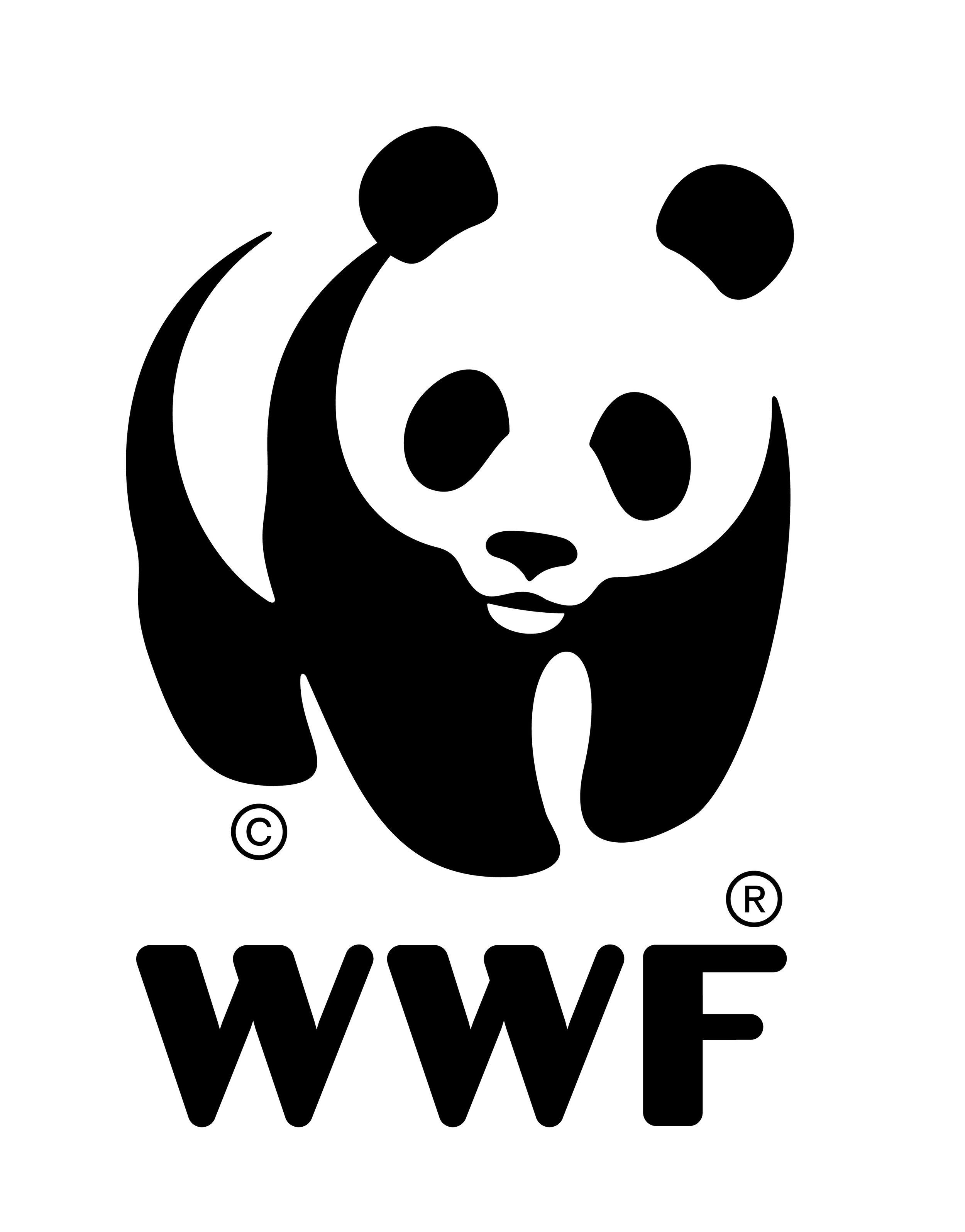 LOGO WWF.JPG