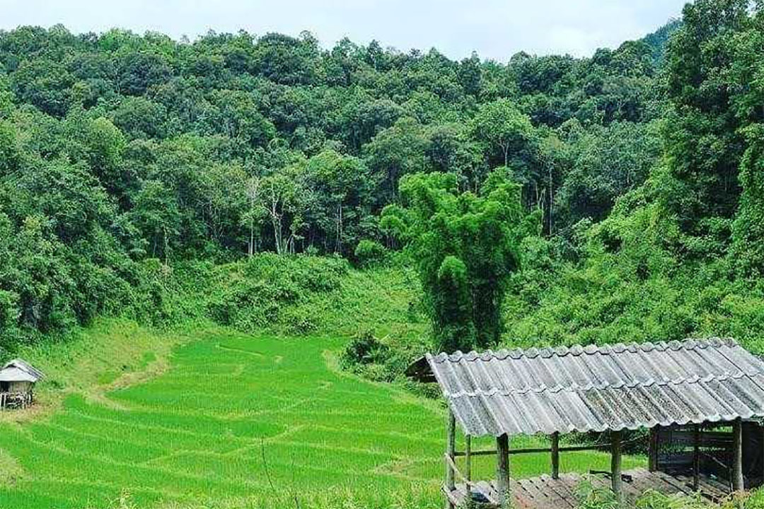 If Not Now, When? UNCCD COP 14 Must Adopt An Ambitious Resolution on Land Tenure - The SDG Knowledge Hub