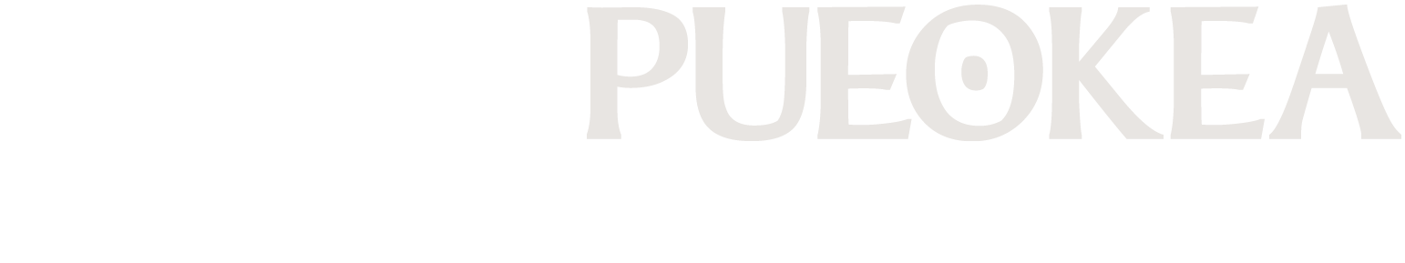 PK-wordmark.png