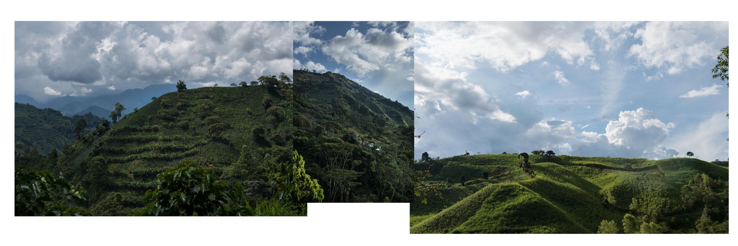 landscape_insta-1.jpg