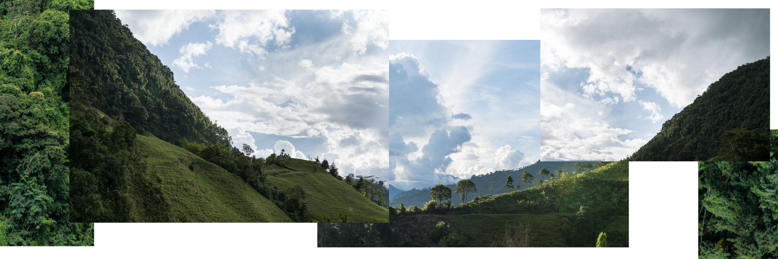 landscape_insta-2.jpg