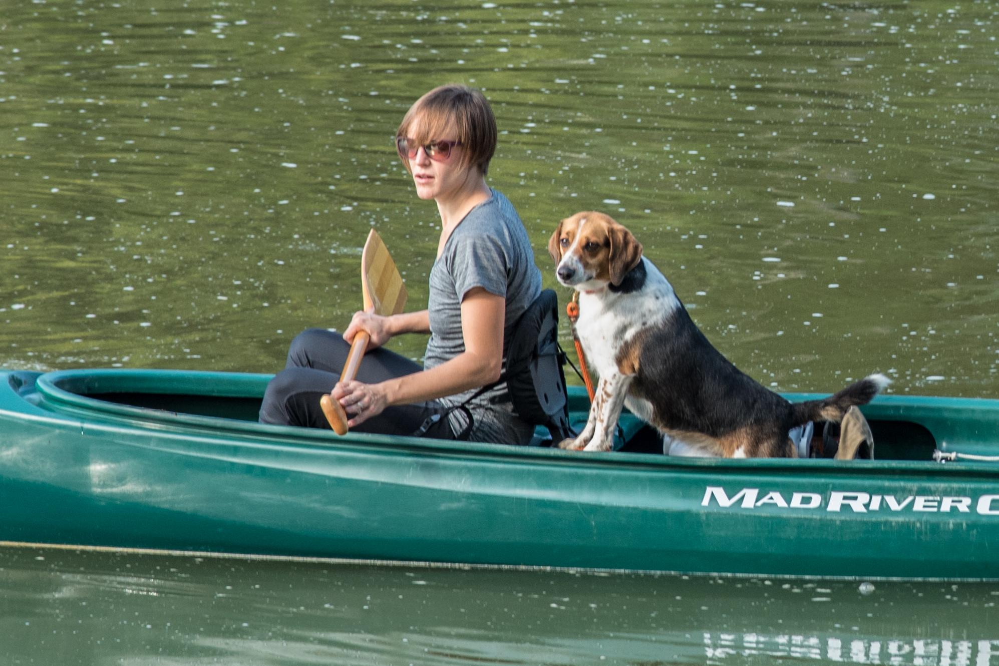 Canoe_Puppy_CVB.jpg