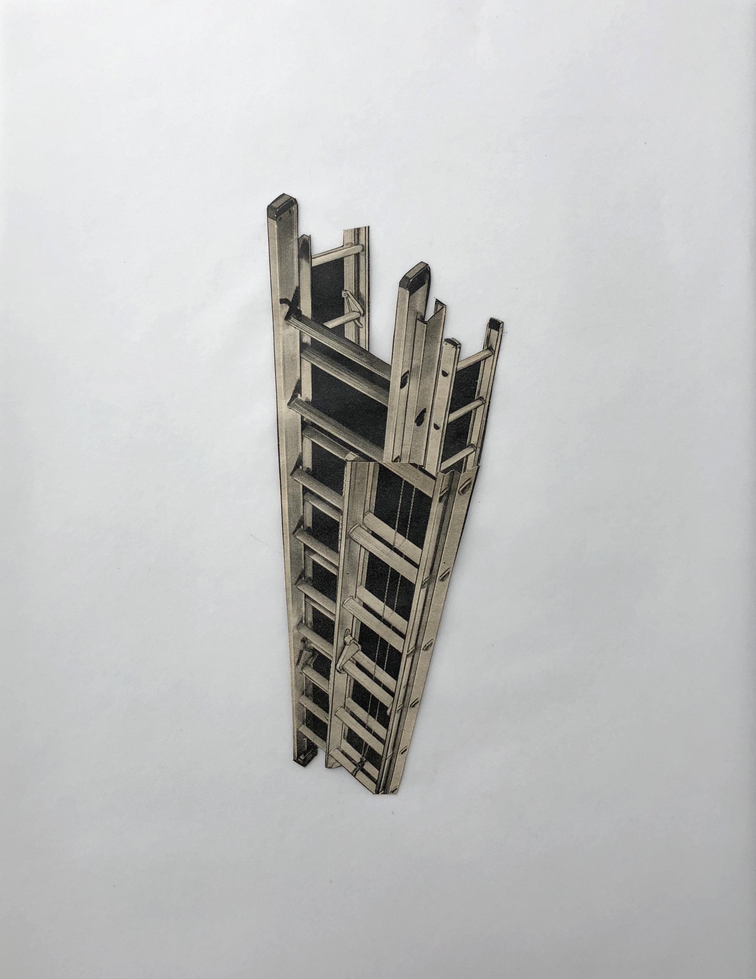 CAT - ABSTR - Ladders - CROP.jpg