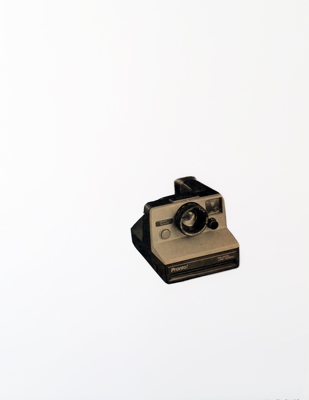 CATALOGUE - Reddimaid ADJUST - polaroid WHT.jpg