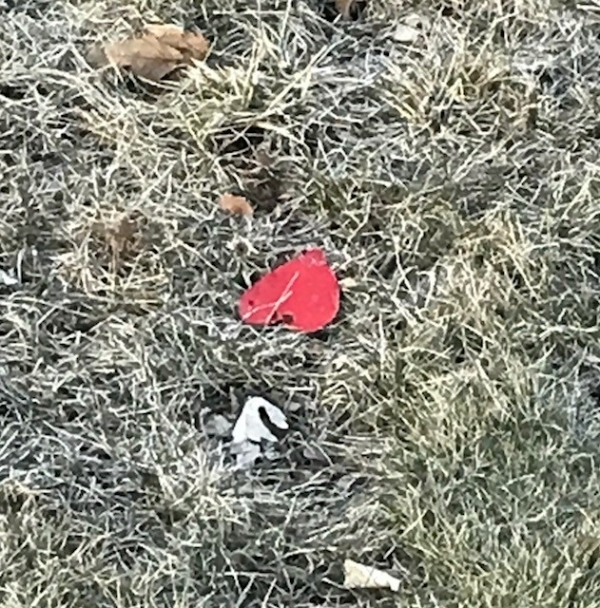 This red heart was spotted one morning when I opened my blinds in my bedroom. The morning after my birthday, I never open the blinds to the window that this was out of.
