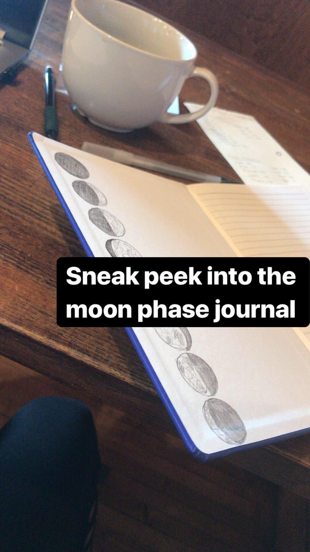 moon journal.JPG
