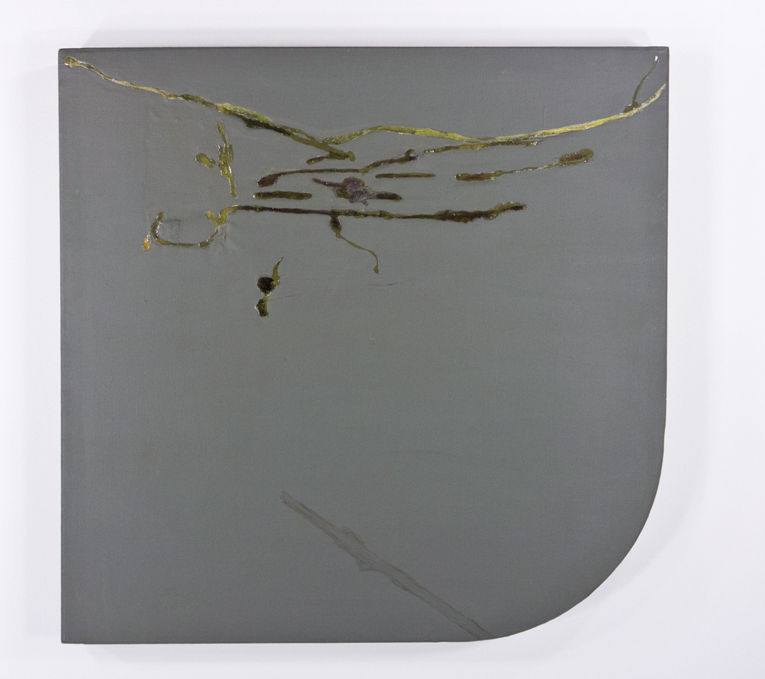 "Scarred Side, Elephant; 1966; Oil and resin on canvas, rounded bottom right corner; 211⁄2 x 21""; Item #057"