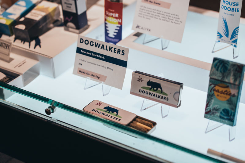 gallery-dogwalkers.jpg
