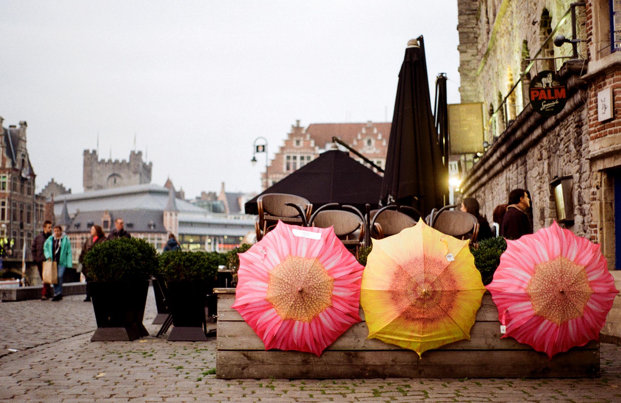 Belgium-Umbrellas.jpg