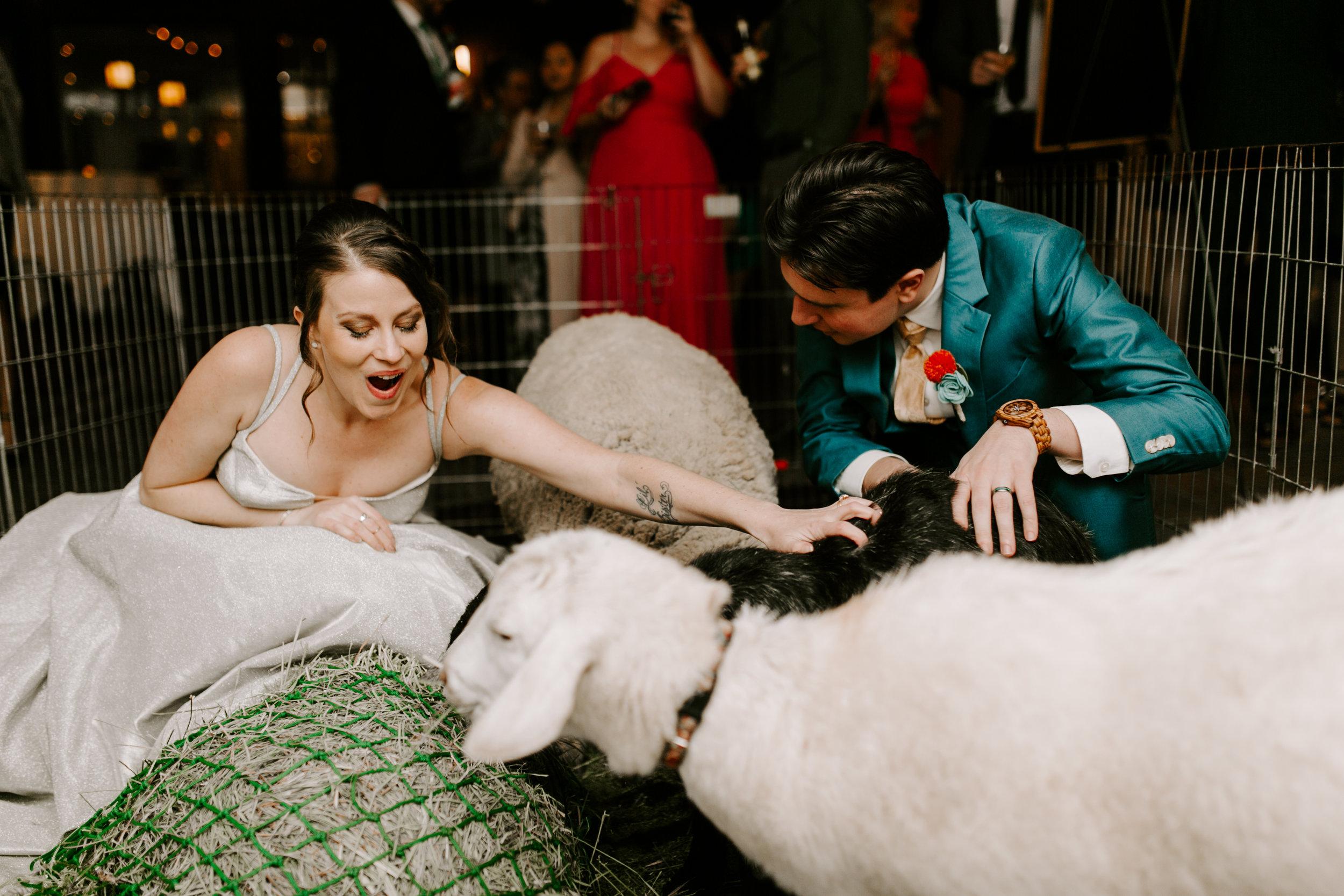 pinkfeatherphotography.Pasadena-wedding  (406 of 538).jpg