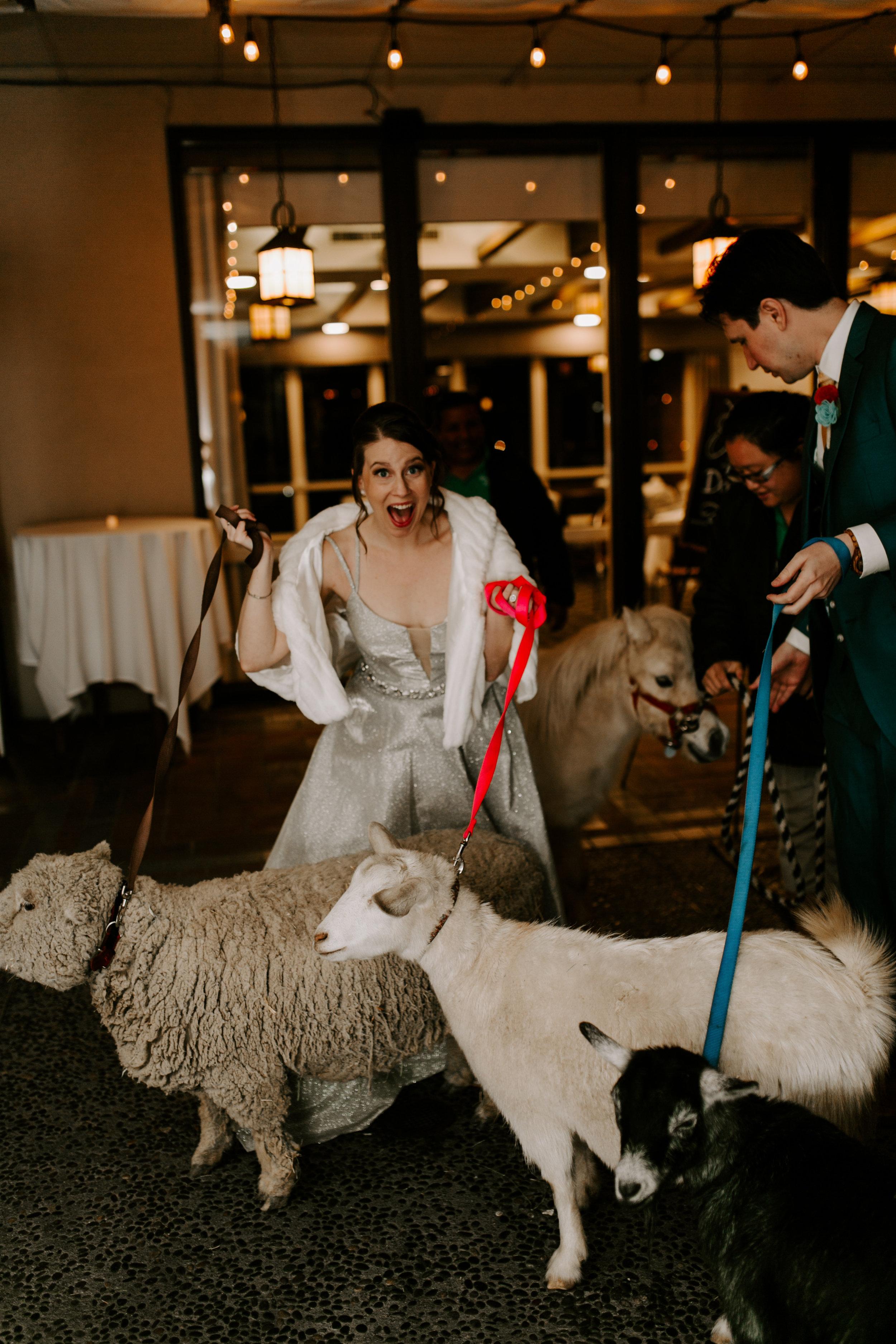 pinkfeatherphotography.Pasadena-wedding  (435 of 538).jpg
