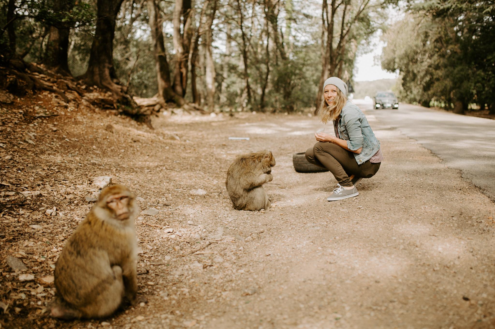 pinkfeatherphotography-Monkeys- morocco-9919.jpg