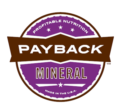 Payback Mineral Logo.png