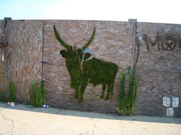 graffiti moss.jpg