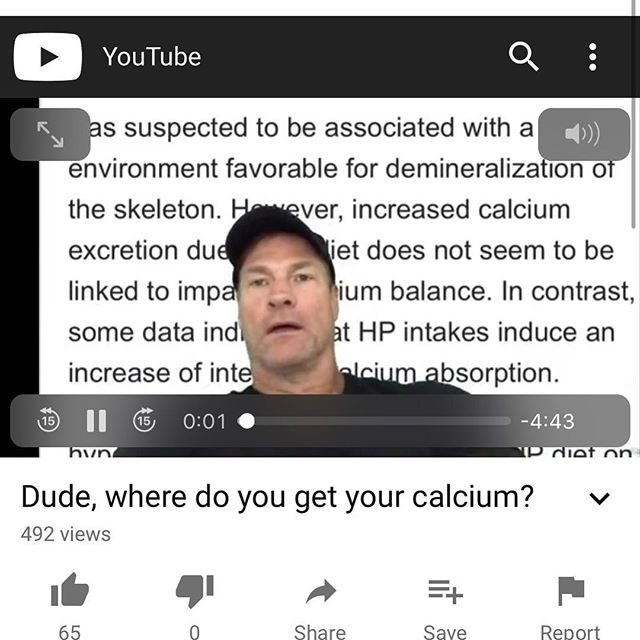 Dude, where do you get your calcium? Link to my YouTube channel in my bio!
