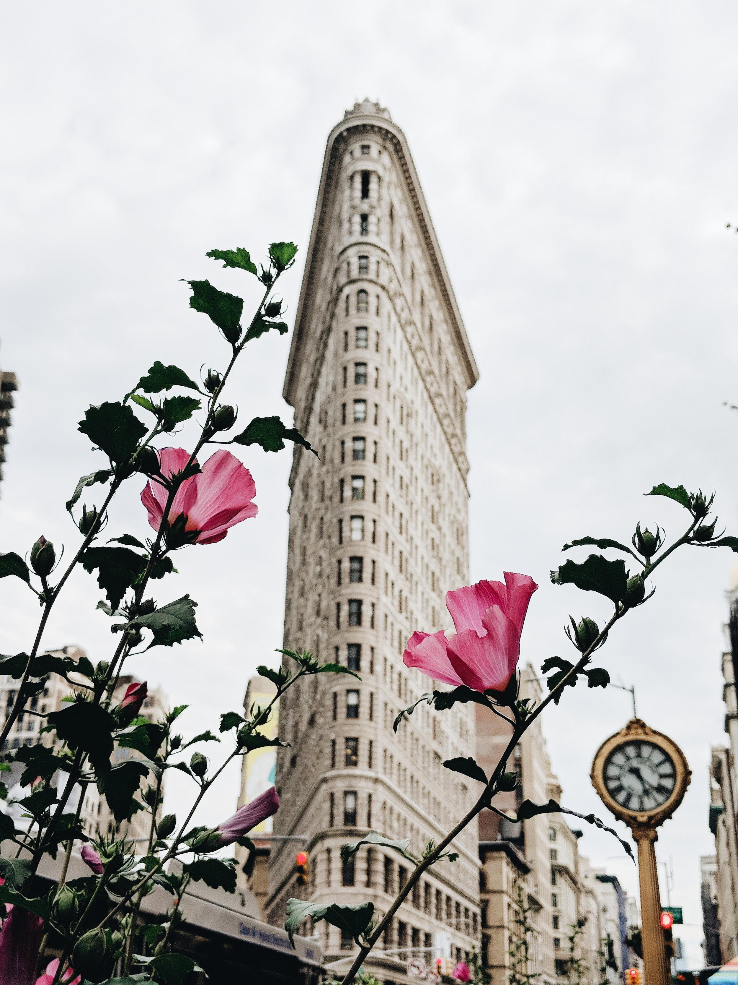 Flatiron Building, New York City, NY