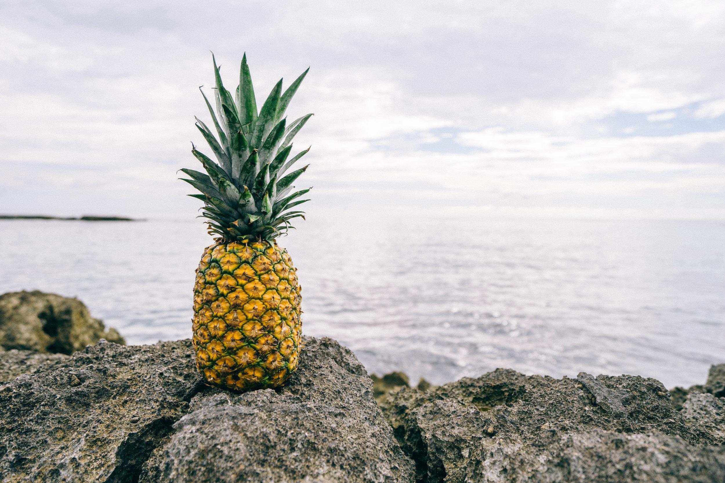 Dole Plantation - Pineapple Plantation