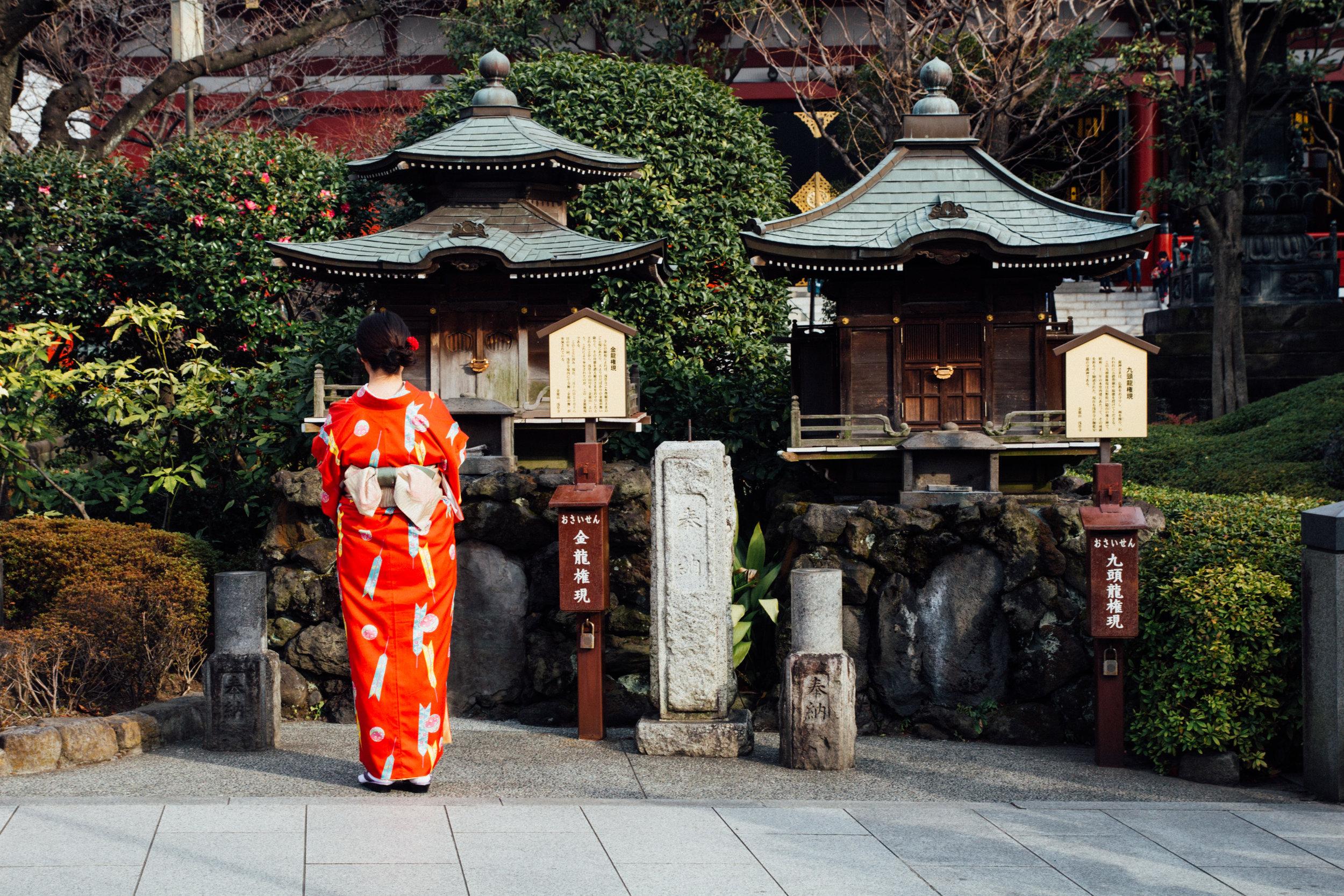 Travel JAPAN: Tokyo & Kyoto's Top Attractions