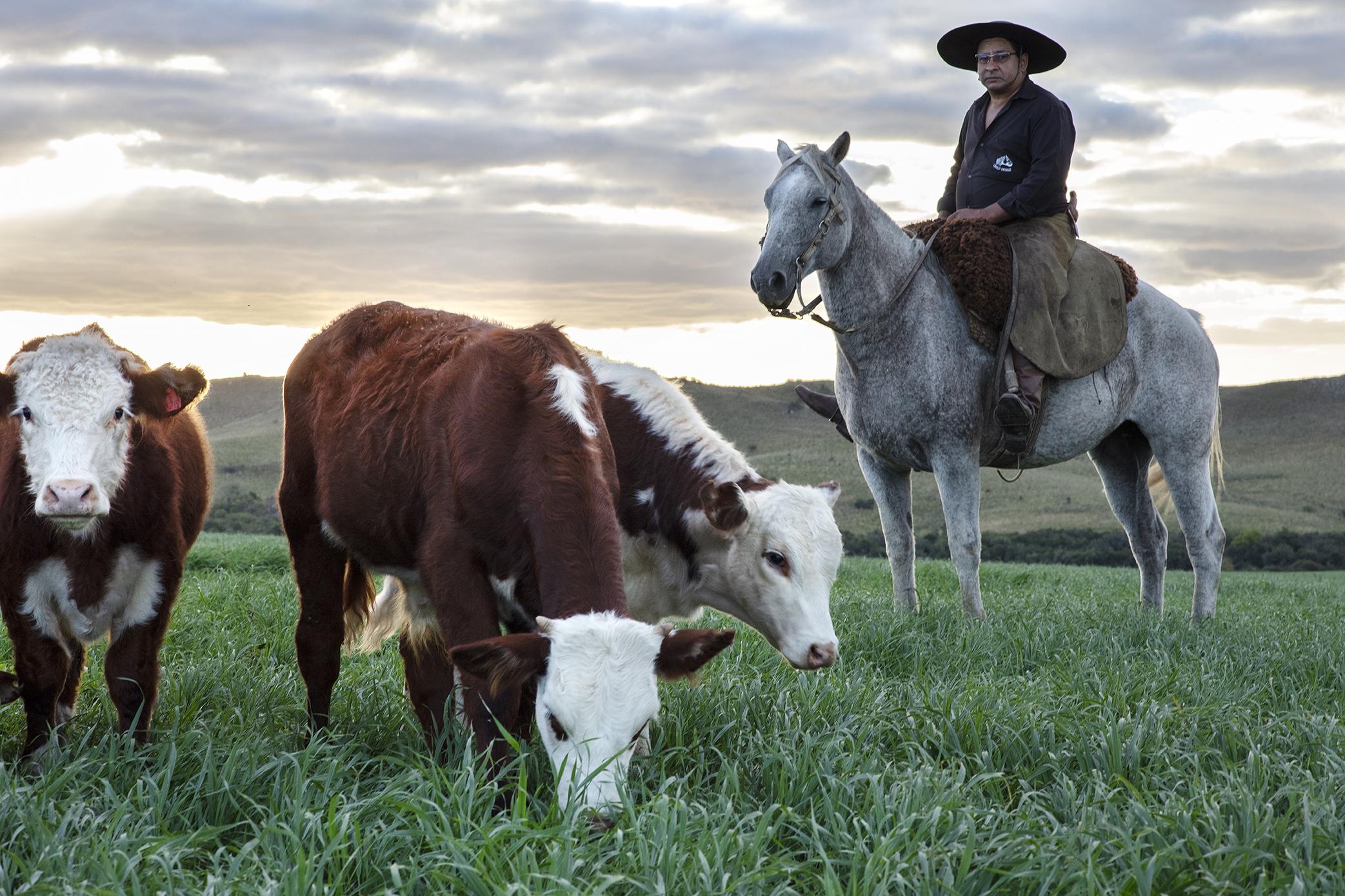 190417NH_brazil_maritza_farm_day1_2752.jpg