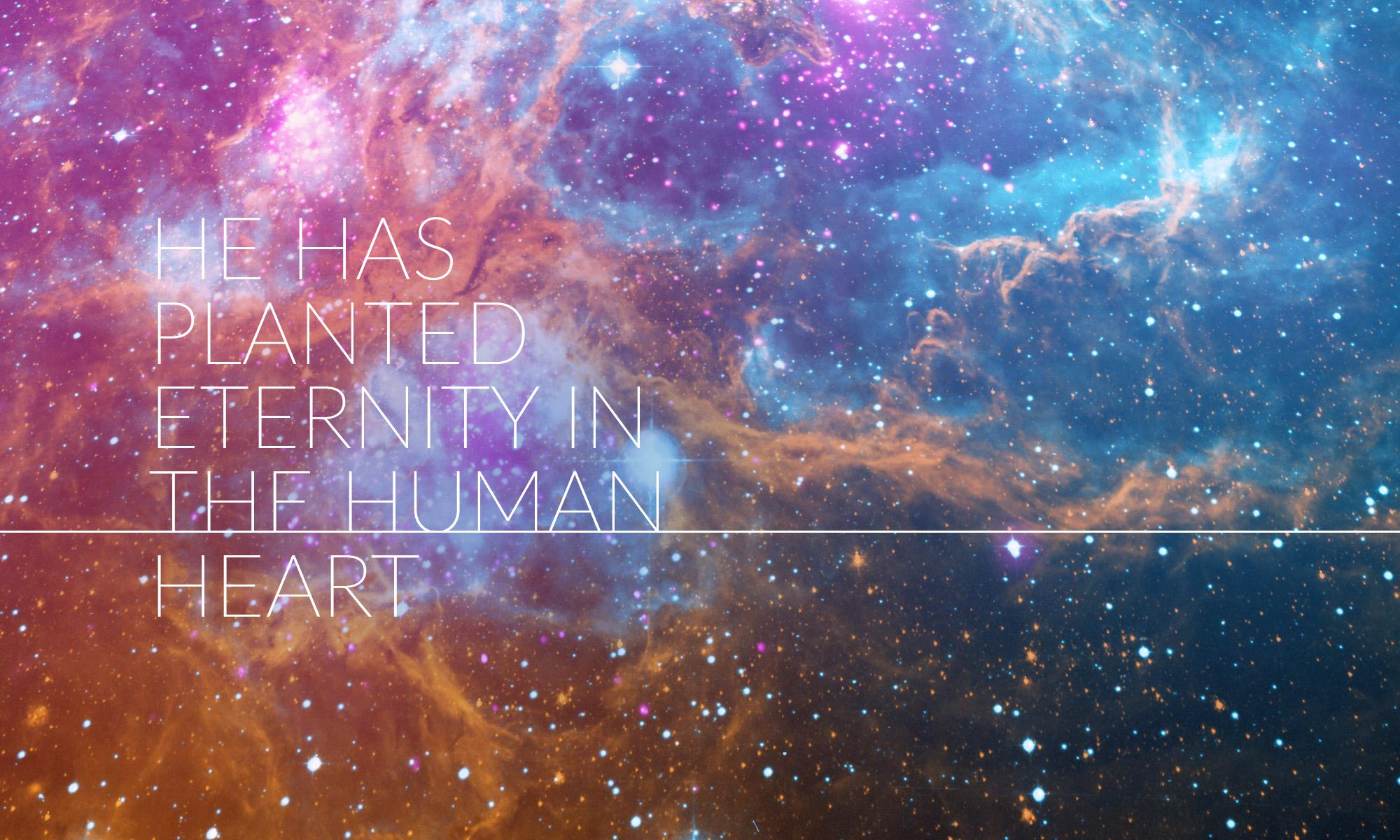 Planted Eternity 2.jpg