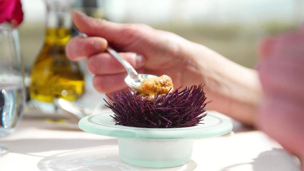 jacques-pourcel-la-maison-hubert-carpe-diem-menu-food-urchin.jpg